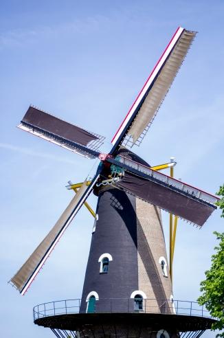 Oisterwijk (1)